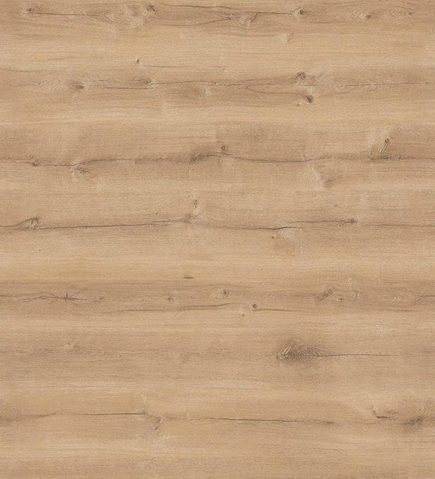 Ilgaz Oak