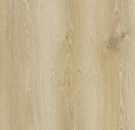 Trend Oak